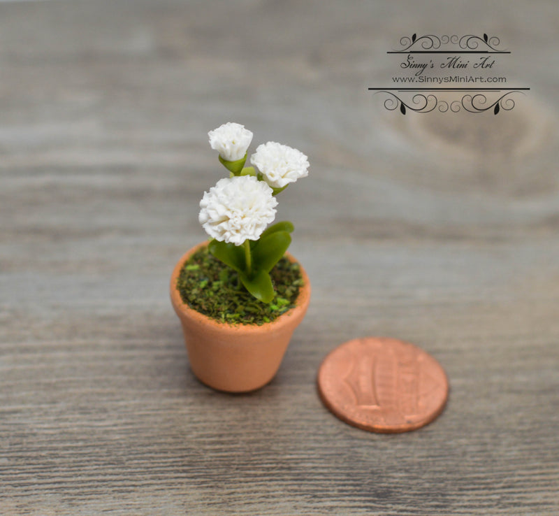 1:12 Dollhouse Miniature White Carnation Flowers in Clay Planter, HMN 762