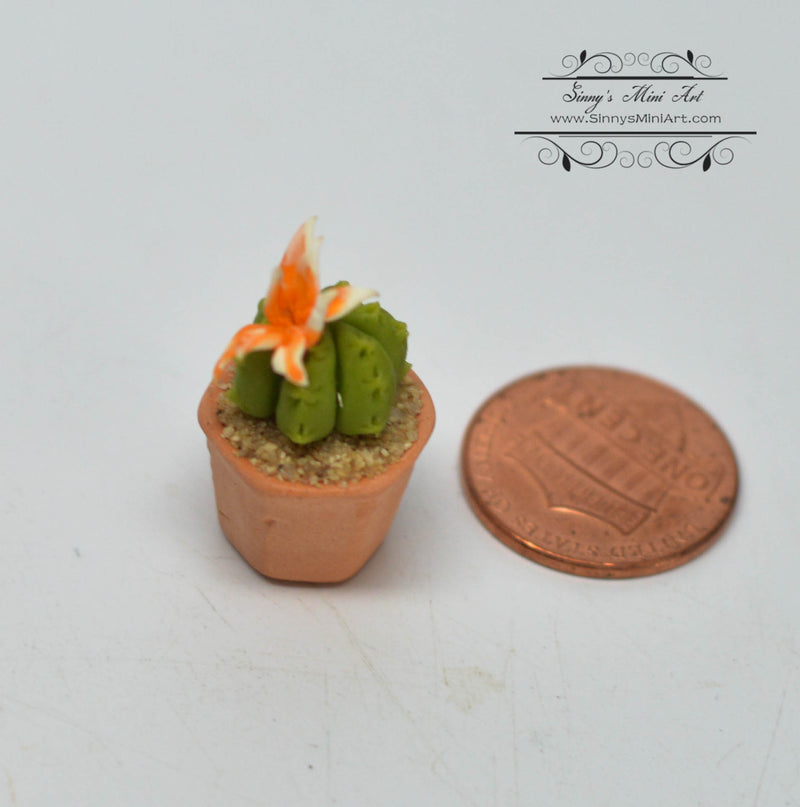 1:12 Dollhouse Miniature Succulent Plant in Clay Planter with Flower HMN 651