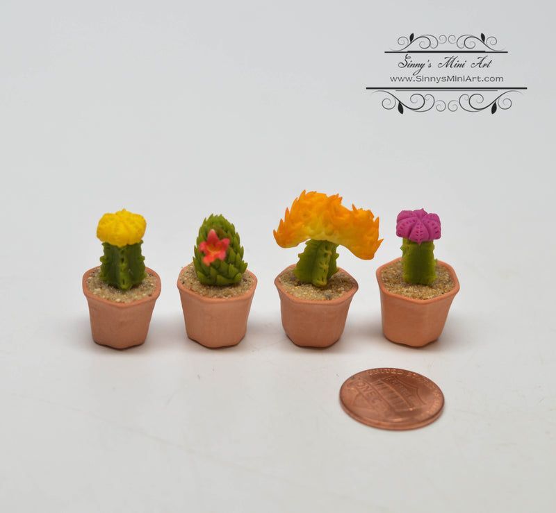 1:12 Dollhouse Miniature Cactus with Flowers in Clay Planters Set HMN 1373