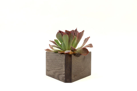 Triangle Planter (Dark)