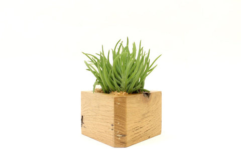 Triangle Planter (Light)