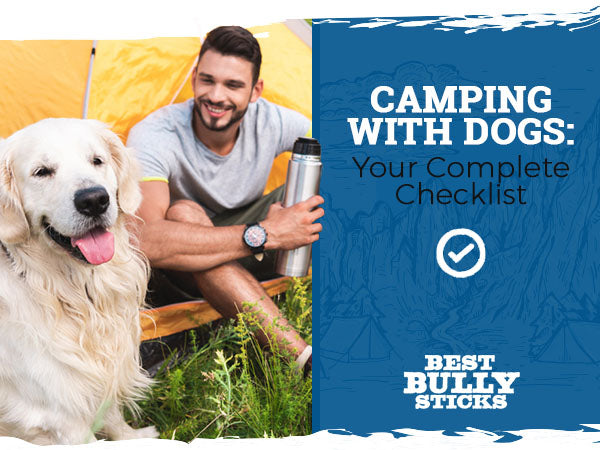 Camping with Dogs Your Complete Checklist