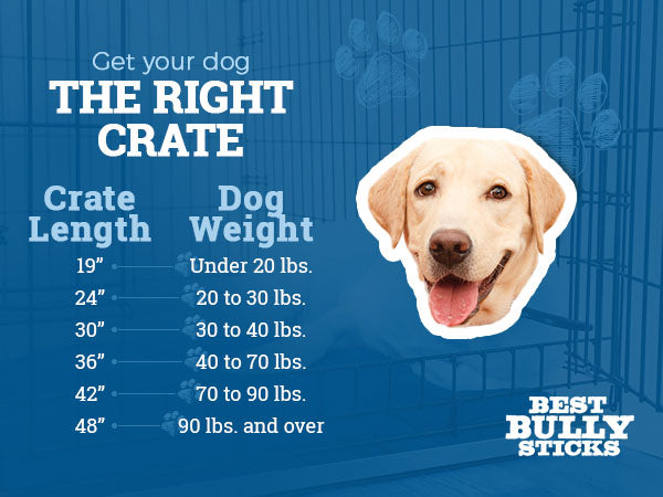 Get your dog the right crate