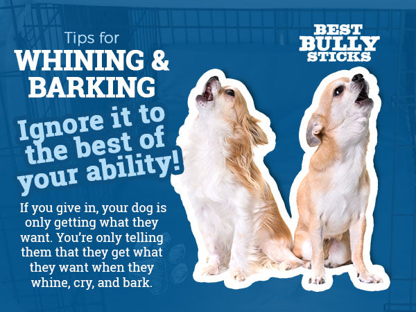 tips for whining and barking
