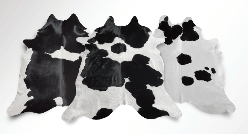 Black and white cowhide variants