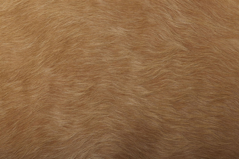 Large solid dark palomino cowhide rug close up
