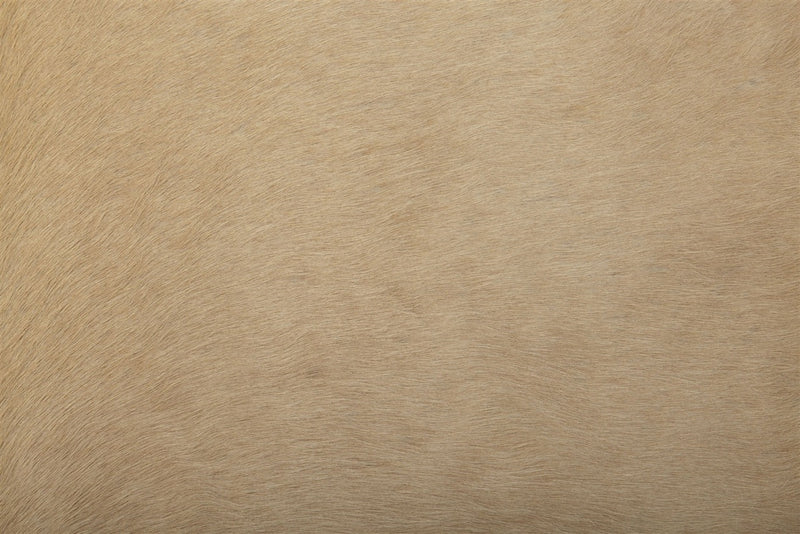 XLarge solid light palomino cowhide rug close up