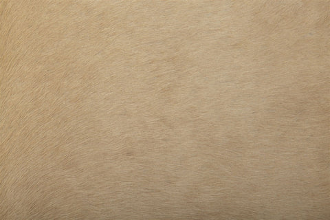 Large solid light palomino cowhide rug close up