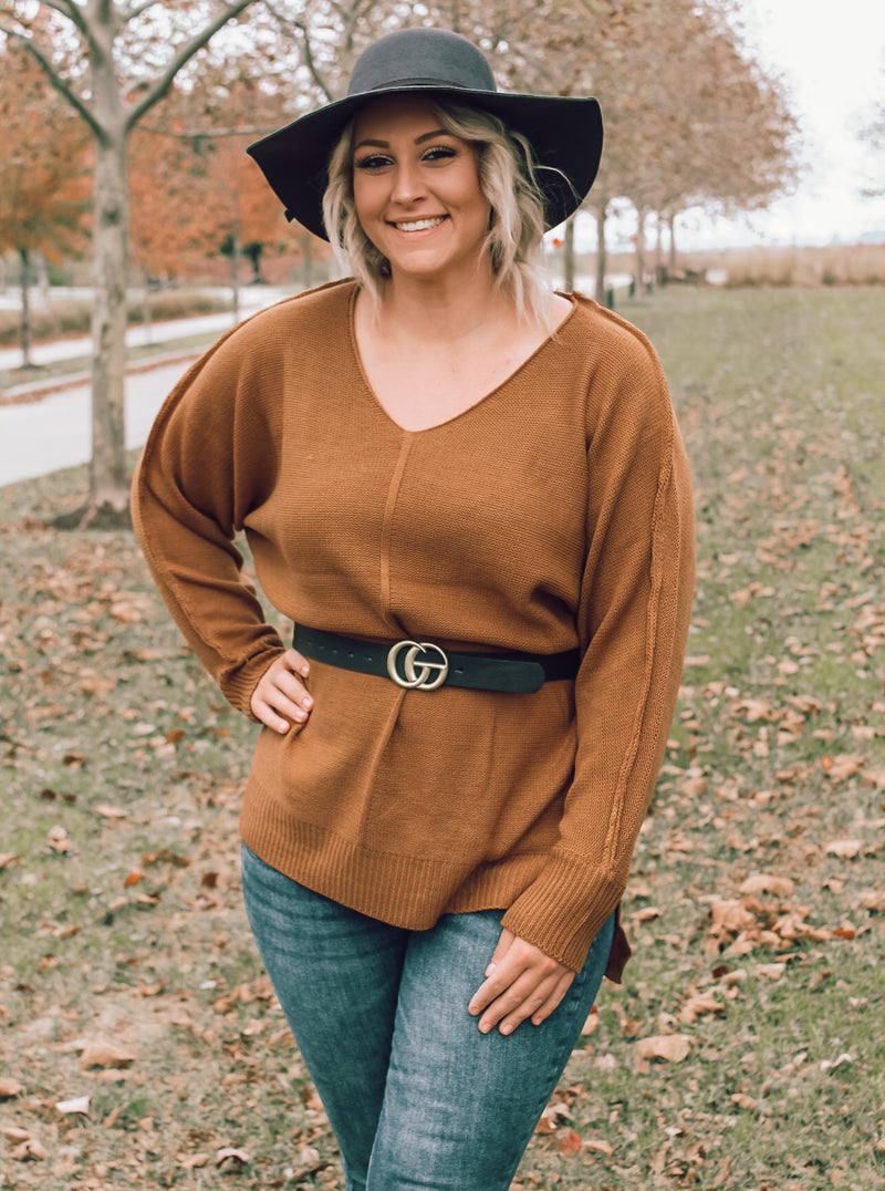 Coffee V-Neck Sweater (Plus Size)