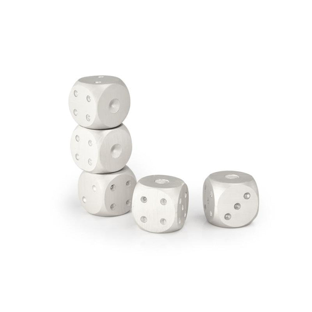 5 Pcs Reusable Stainless Steel Whisky Dice - The Epicurean Cook®