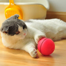 Rolling Laser Ball Pet Toy