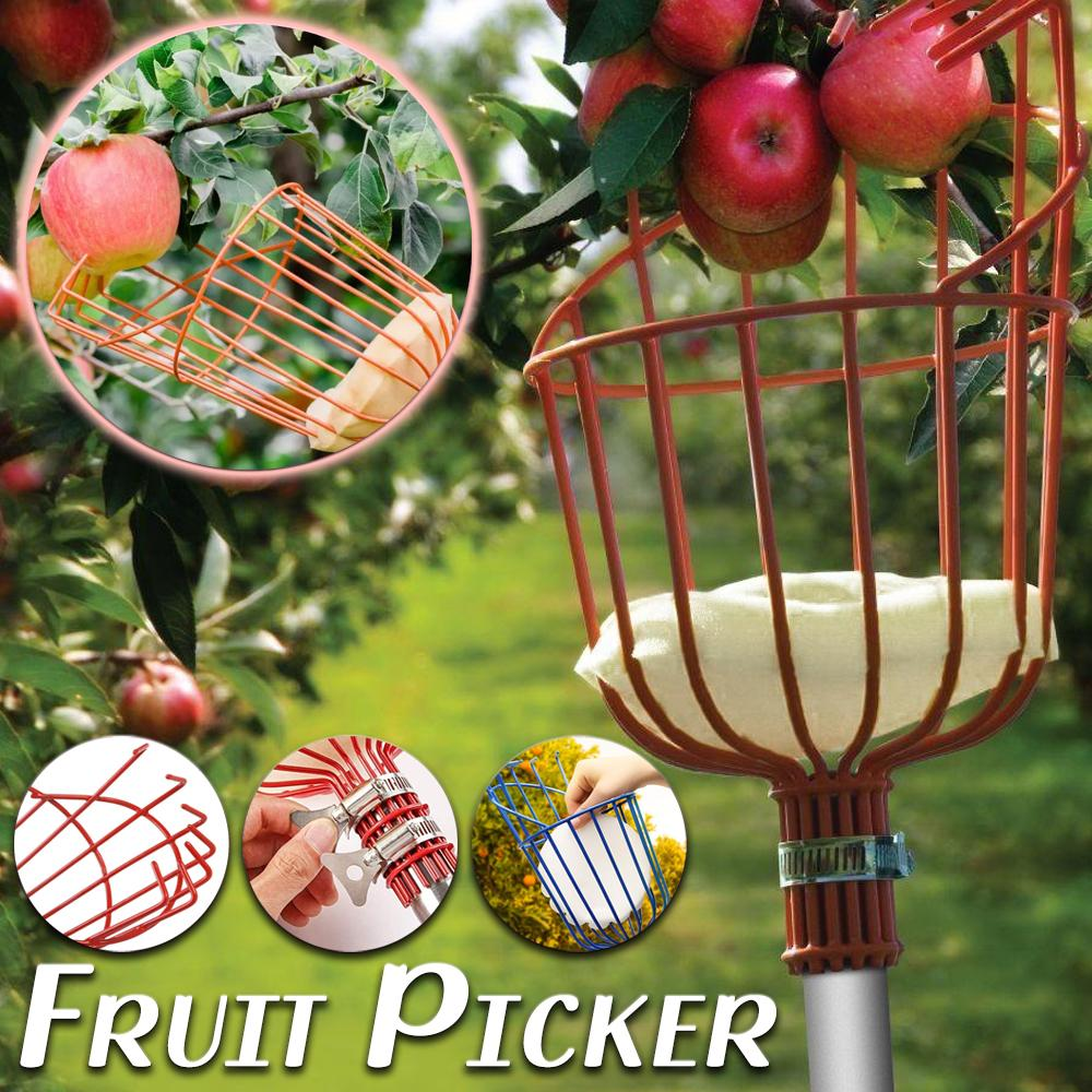 Fruit Picker