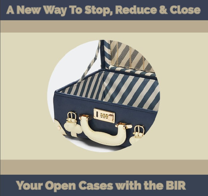 A New Way To Stop, Reduce and Close Your Open Cases with the BIR - Emelino T Maestro