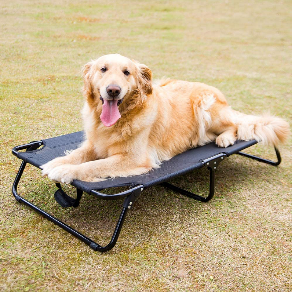 Pawness™ Elevated Dog Bed