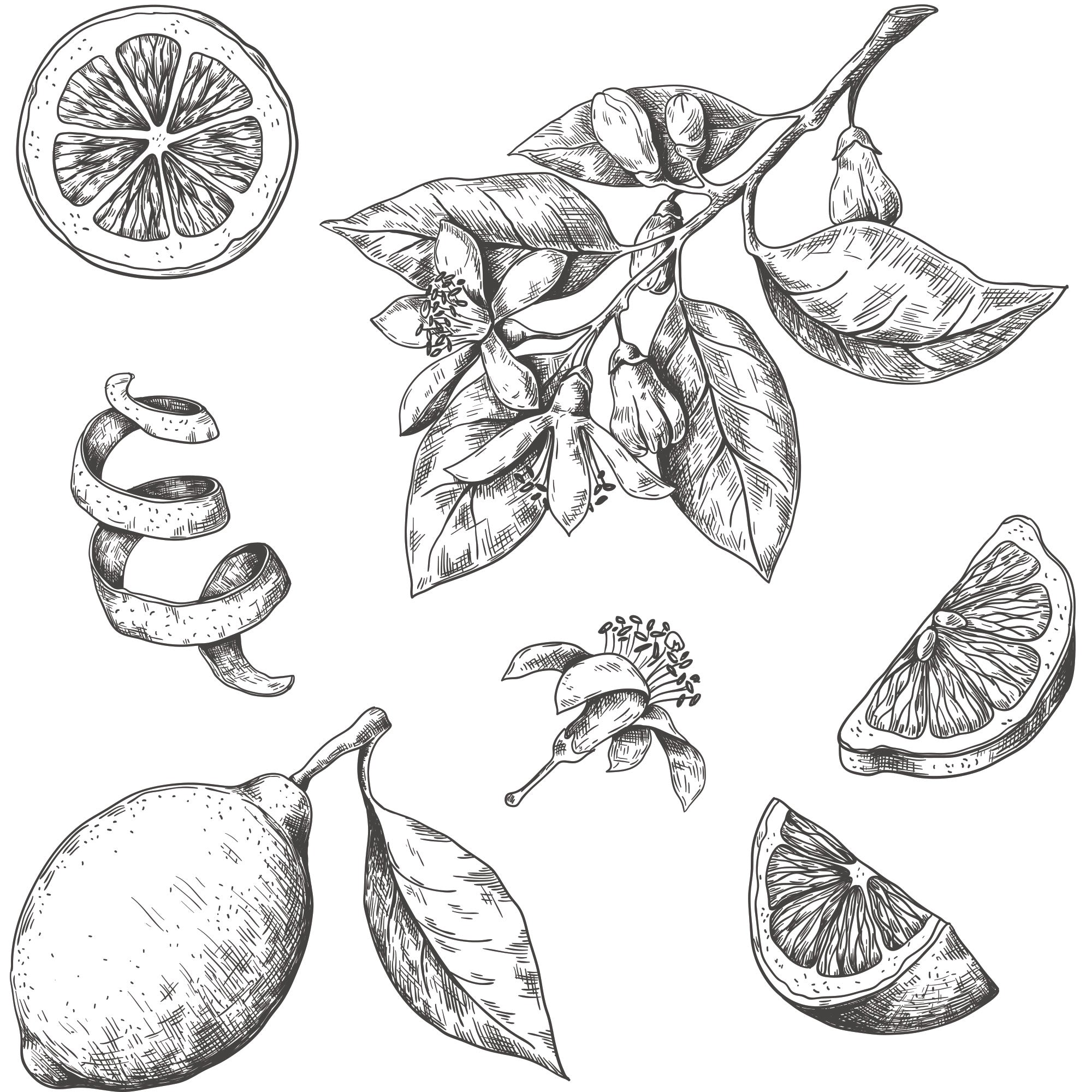 Lemons wallpaper black and white