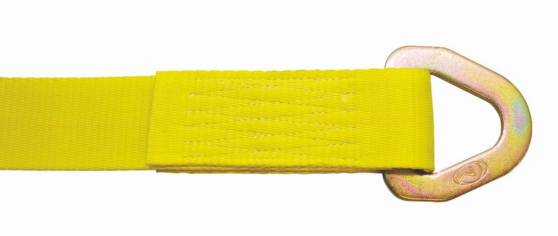 "2"" WINCH STRAP WITH #110 DELTA RING - 27FT"