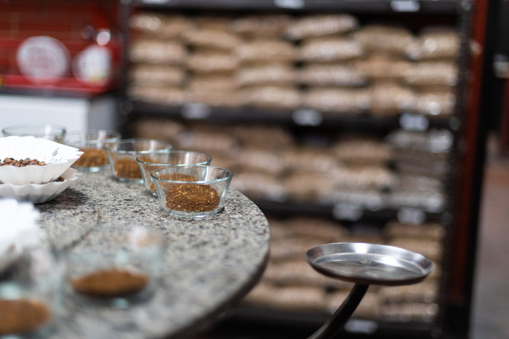 One of many cuppings on our travels in Peru.
