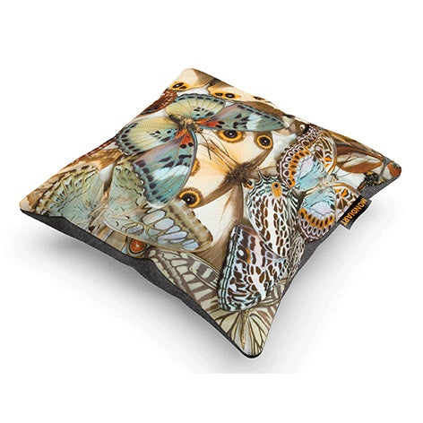 Cushion Tropical butterfly mania