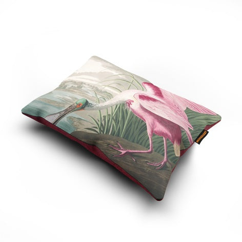 Cushion  Roseate Spoonbill - bird