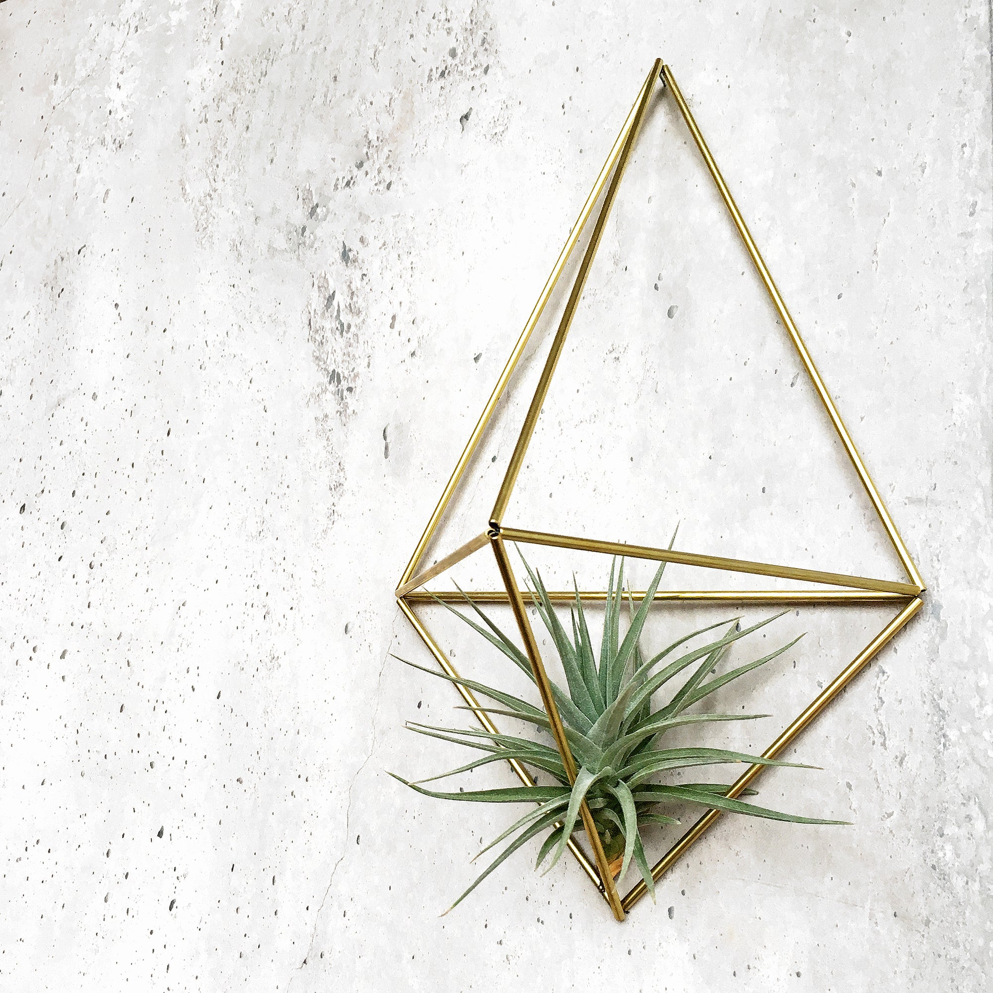 DIY Wall Planter Facet