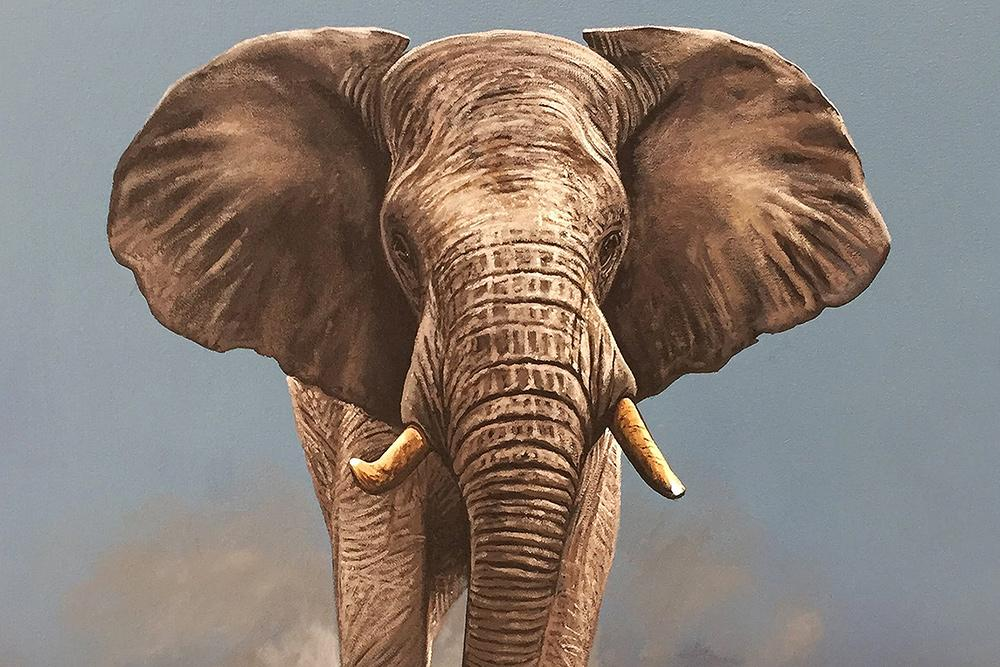Buy Elephant Big 5 Wildlife Animal Paintings | South African Artists | Fine Art Portfolio