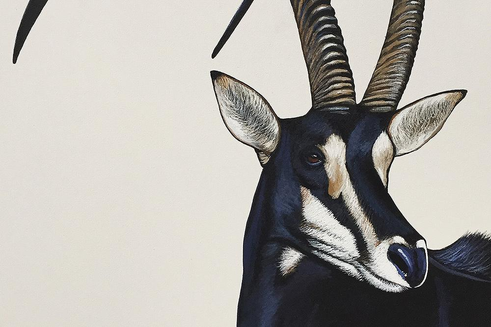 Collecting Wildlife Art | Fine Art Portfolio South Africa