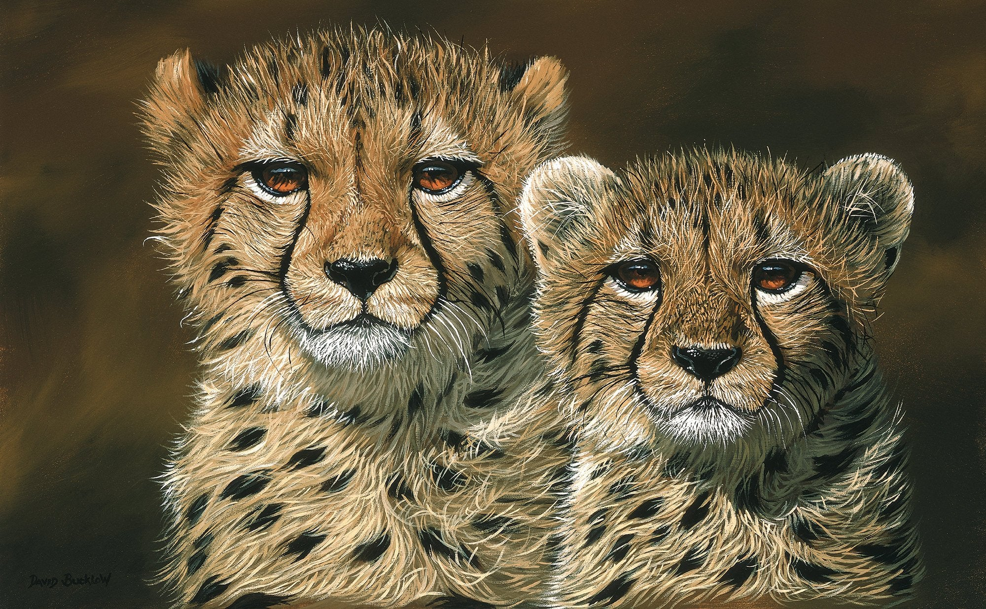 South African Prints by David Bucklow - Cheetah Cubs Canvas Print - Fine Art Portfolio