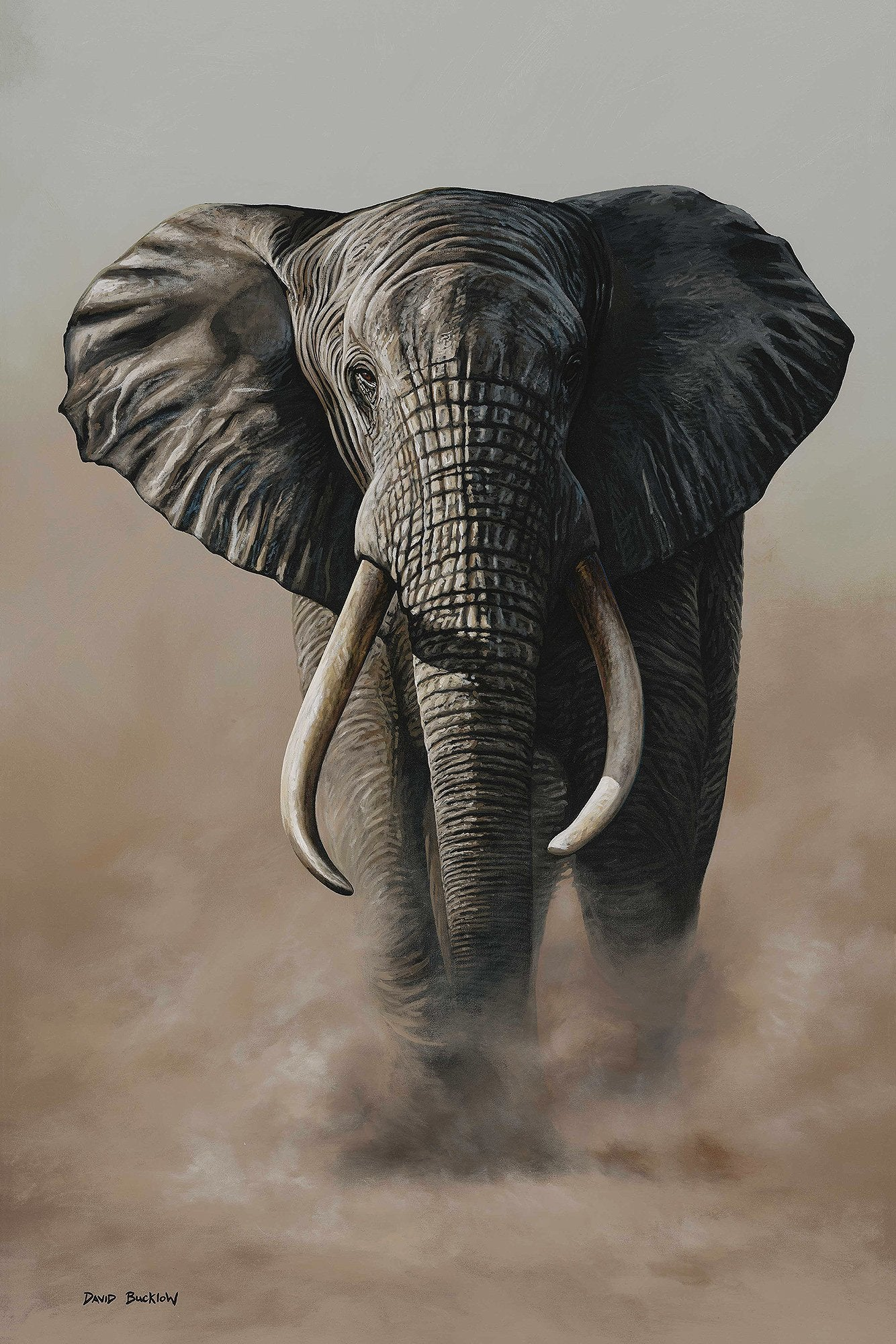 South African Limited Editions by David Bucklow - Madiba - Elephant - Fine Art Portfolio