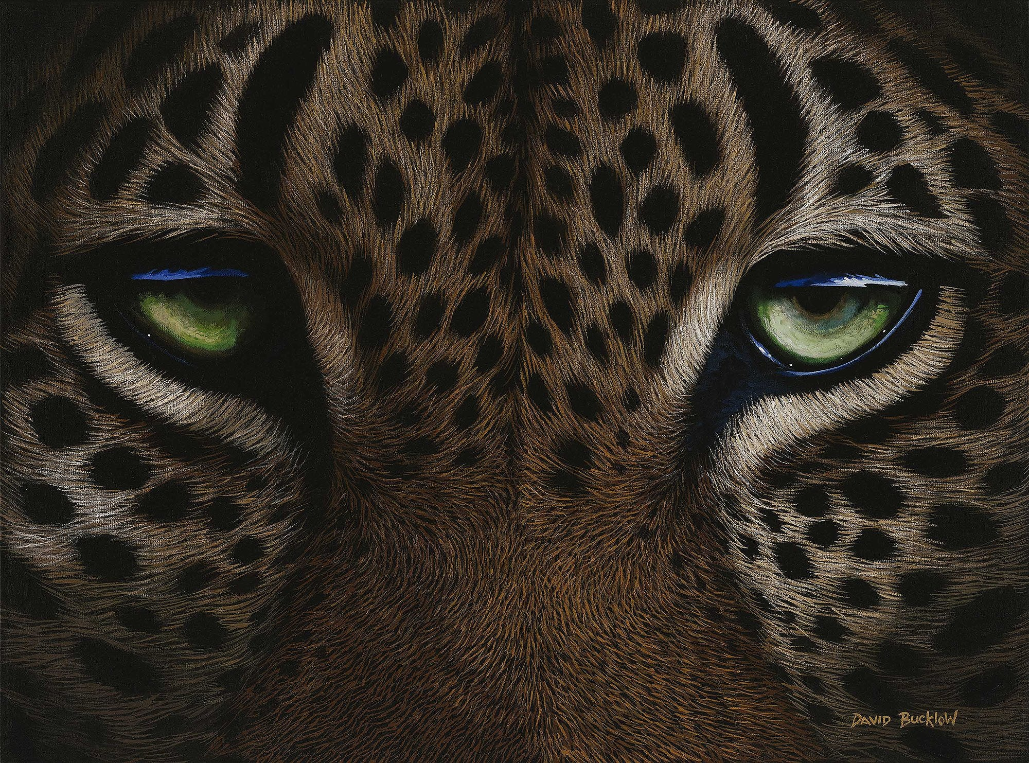 Leopard Pint of a leopard up close by artist David Bucklow