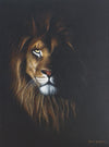 King of the Woods| Lion