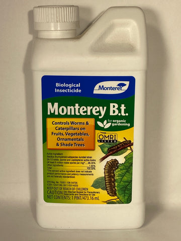 Monterey BT Concentrate 16 oz.