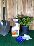 Mosquito Beater Ready to Spray (RTS) 32 oz.- Bonide