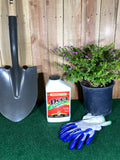 Deer Repellant Concentrate 32 oz.- I must garden