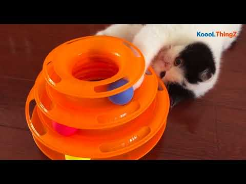 Triple Play Disc Cat Toy