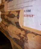 log siding peeled red pine