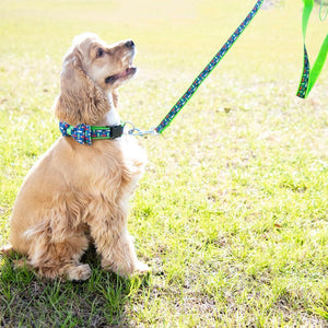 Lifestyle view of our Shotgun Shell Pet Leash