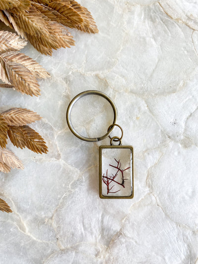 Brass Rectangle Resin Keychain - Gracilaria