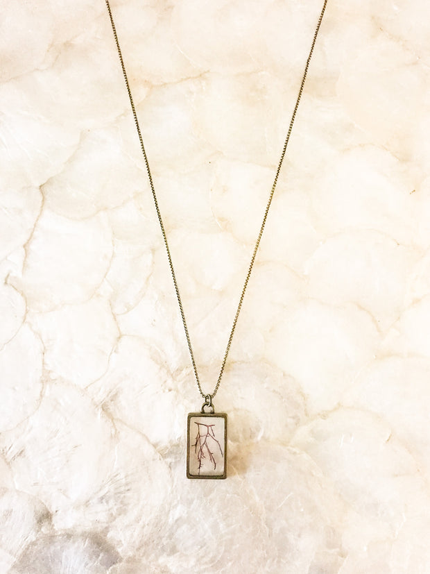 "30"" Framed Rectangle Pendant Necklace - Agardhiella"