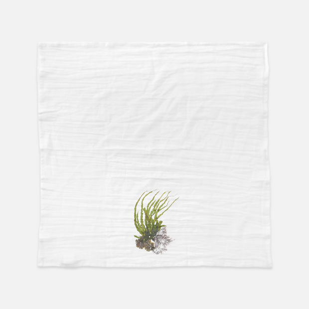 "Tea Towel - ""Crest II"""