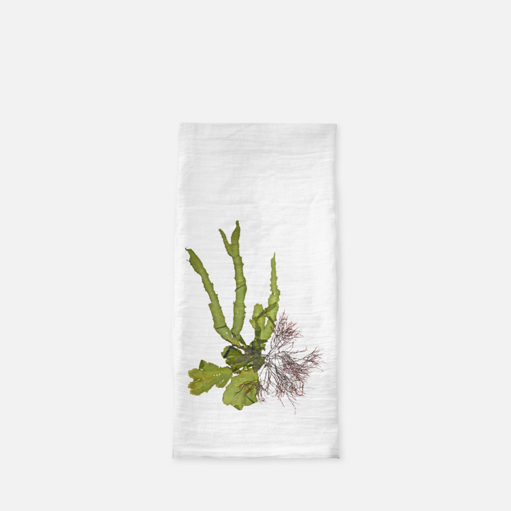 "Tea Towel - ""Intertidal II"""