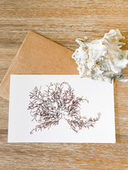 "Blank Greeting Card - ""Riptide"""