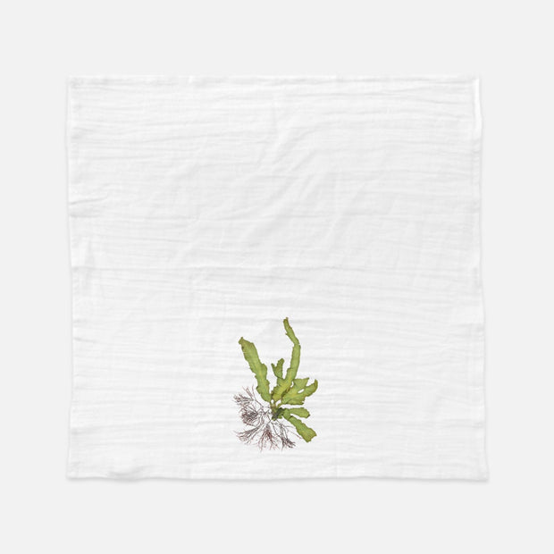 "Tea Towel - ""Intertidal I"""