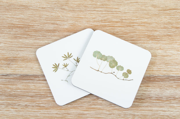 Set of 2 Square Cork-backed Coasters