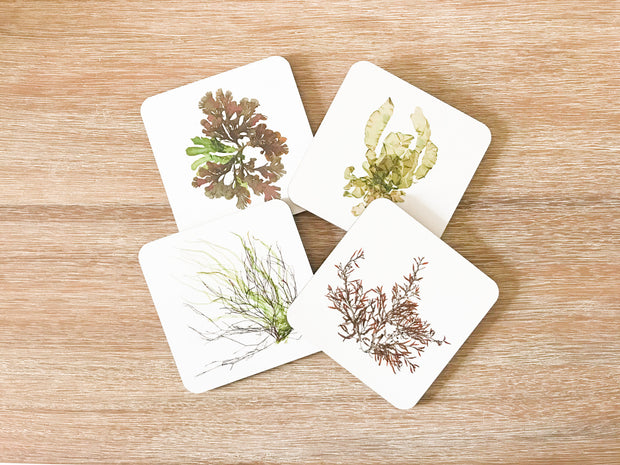 Set of 4 Square Cork-backed Coasters