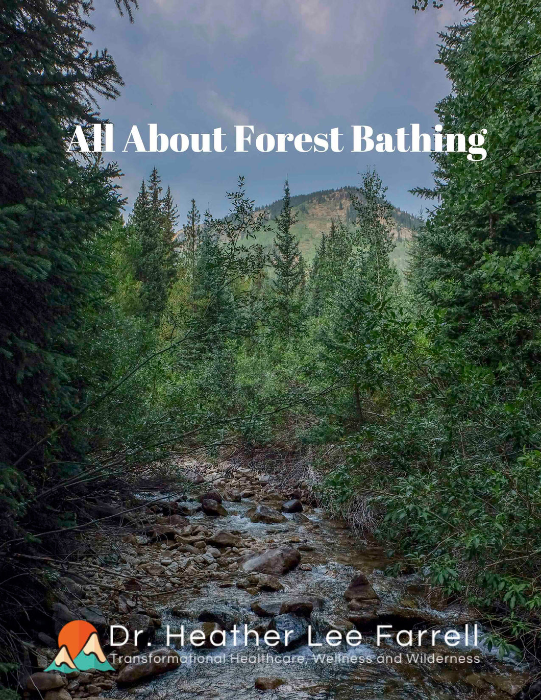 All About Forest Bathing