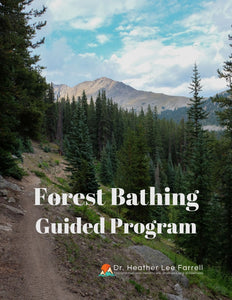 Forest Bathing Guided Intensive Program