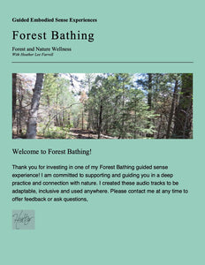Senses Experienced:  Guided Forest Bathing