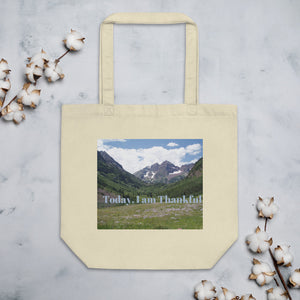 Today, I am Thankful Eco Tote Bag