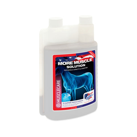 More Muscle Solution (1L) - Equine America