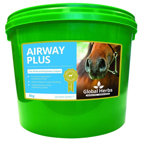 Airway Plus Powder - Global Herbs